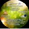 Optimer dit immunsystem (CD format)