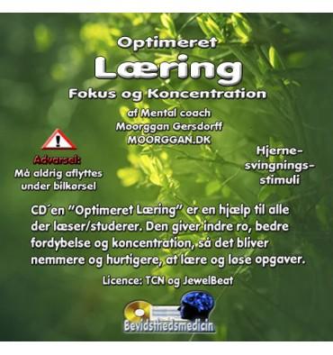 Optimeret læring (Til download)